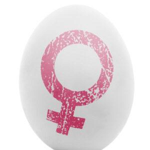 féminité-femme enceinte-ménopause